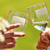 Food & Wine Festivals this summer and fall