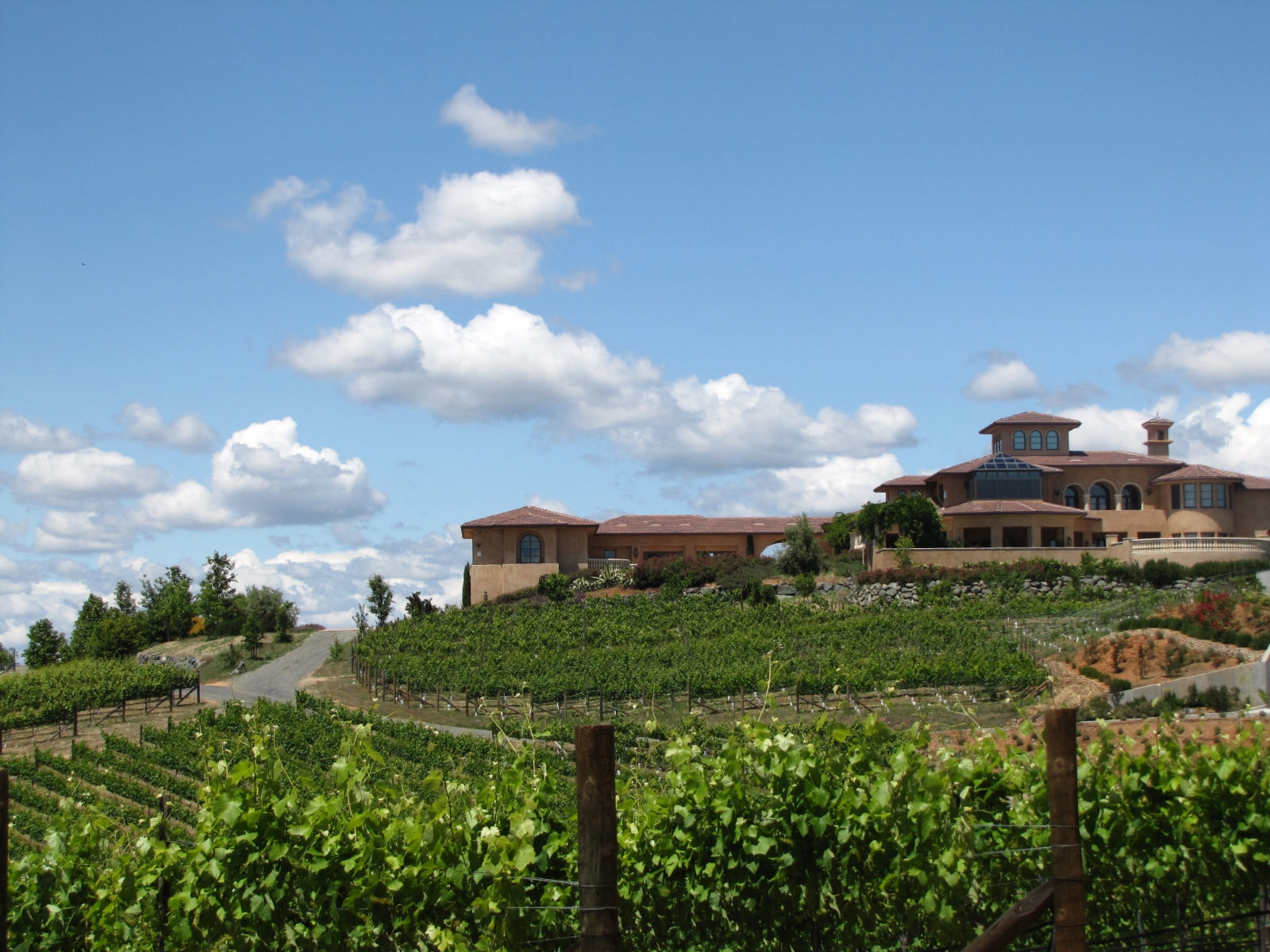 wise villa winery a destination in lincoln sierra
